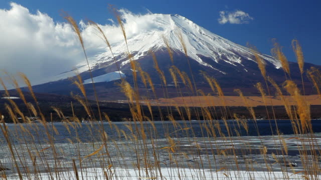 the majestic mt fuji, on lake yamanaka, japan, asia - 冷たい点の映像素材/bロール