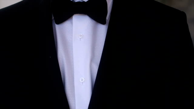 The man in a suit and bow tie