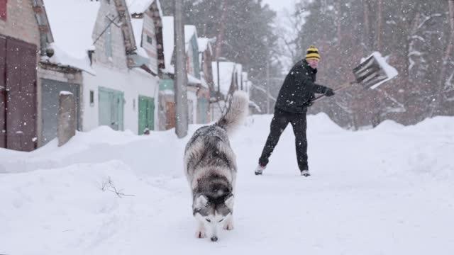 vídeos de stock e filmes b-roll de the man removes snow with a shovel near the garage. - pá para neve