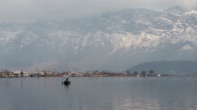 vídeos y material grabado en eventos de stock de the massive dal lake bang in the middle of srinagar commands impressive views of both forested and snowcapped mountains the river jhelum flanked by... - nevosa