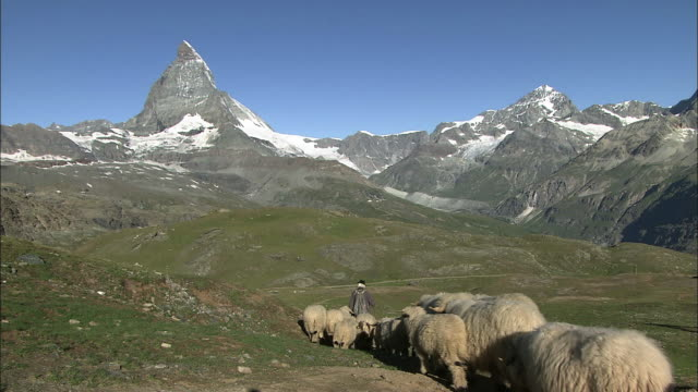 the matterhorn  - shepherd stock videos & royalty-free footage