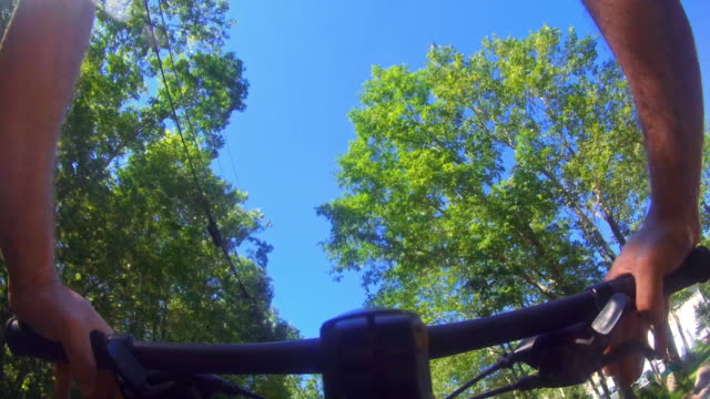 the mature 45-years-old man riding a bike on the road in the forest - 45 49 anni video stock e b–roll