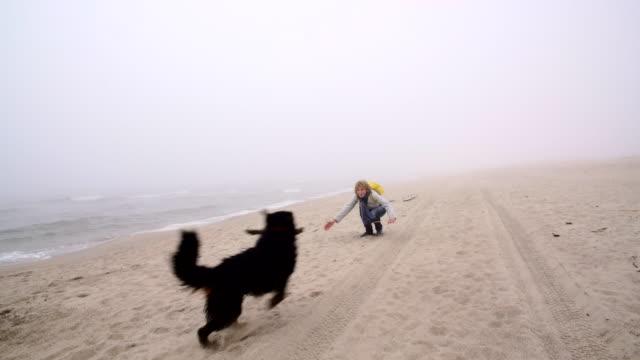die reife 50 jährige frau spielen mit der belgischen sennenhund am strand - 50 54 years stock-videos und b-roll-filmmaterial