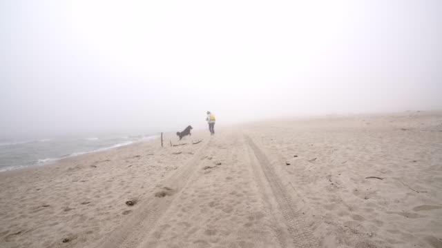 vídeos y material grabado en eventos de stock de la mujer madura de 50 años jugando con el perro de montaña belga en la playa - 50 54 years