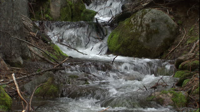 the merced river flows over mossy boulders in yosemite national park, california. - merced fluss stock-videos und b-roll-filmmaterial