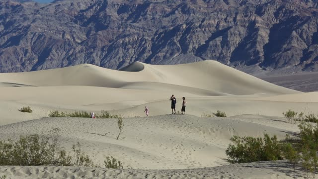 the mesquite flat sand dunes in death valley which is the lowest, hottest, driest place in the usa, with an average annual rainfall of around 2 inches, some years it does not receive any rain at all. - death valley national park stock videos & royalty-free footage