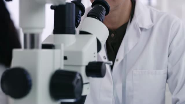 das mikroskop ist da, um alles ans licht zu bringen - biotechnologie stock-videos und b-roll-filmmaterial