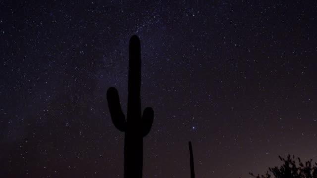 the milky way drifts above saguaro cacti in saguaro national park, arizona. - cactus silhouette stock videos & royalty-free footage
