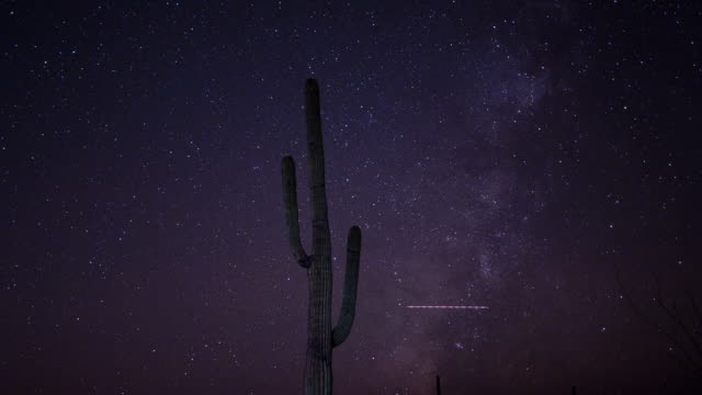 The Milky Way Galaxy moves over a saguaro cactus, Saguaro National Park, Arizona.