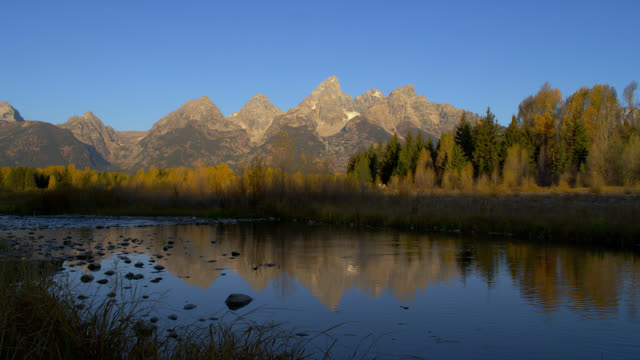 the mirror-like snake river reflects autumn trees in grand teton national park. - snake river stock videos and b-roll footage