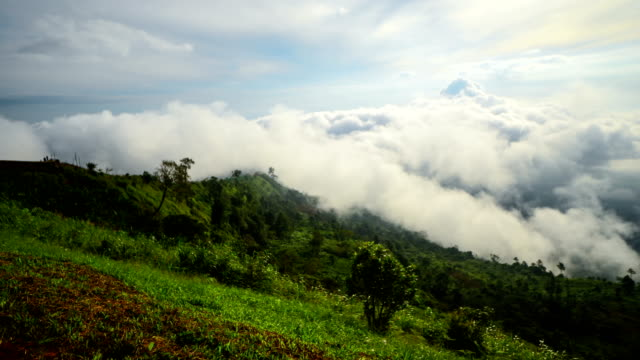 The mist at Phu Thap Boek, Phetchabun Thailand 4k Time Lapse