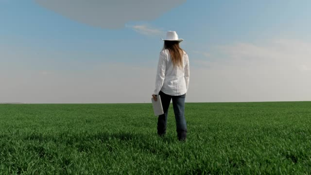 The Modern Farmer Woman, Slow motion of a Young Cheerful Entrepreneur Walking In A Wheat Field, Using Digital Tablet. Springtime, Agricultural Occupation, Small Business, Investment, Innovation, Woman Leader Working, Using Technology, Outdoors.