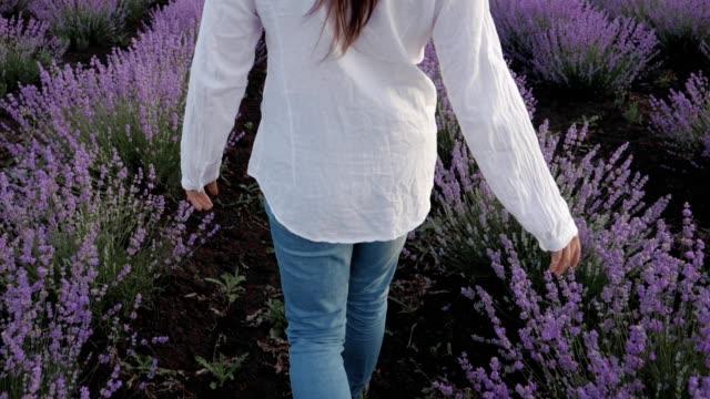 den moderna bonde kvinnan walking i hennes lavendel fält i vårtid, småföretag och investeringar, jordbruk ockupation. - ansvarsfullt företagande bildbanksvideor och videomaterial från bakom kulisserna