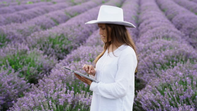 the modern farmer woman walking in her lavender fields in summer, small business and investment, agricultural occupation. - agricultural occupation stock videos & royalty-free footage