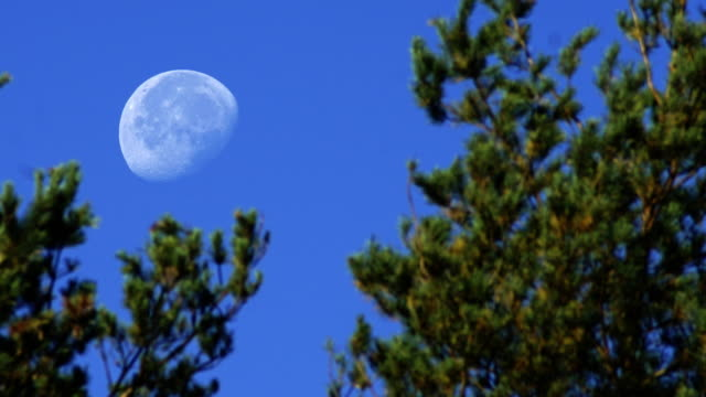 stockvideo's en b-roll-footage met de maan is instellen - astrologie