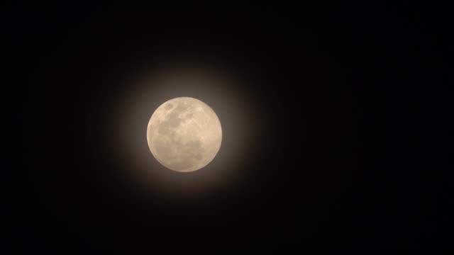 la luna su sfondo nero. - astronomia video stock e b–roll
