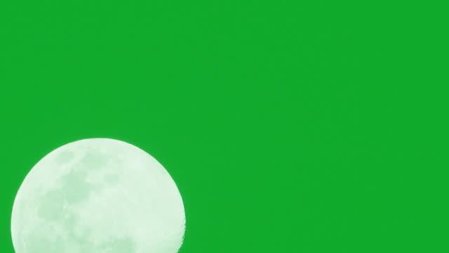 vídeos y material grabado en eventos de stock de la luna sobre fondo verde. - astrología