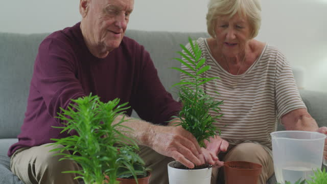 the more plants we have, the happier we become - gardening stock videos & royalty-free footage