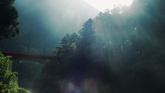 the morning mist seen from the bridge on the river side. - 空気感点の映像素材/bロール