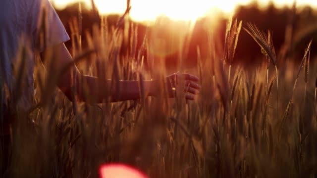 シリアルの動き。耳に優しく触れる女性 - 穀物 ライムギ点の映像素材/bロール