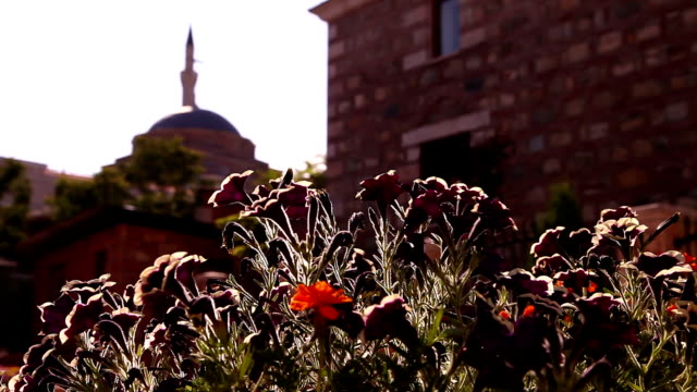 the murat pasha mosque - 1937 stock videos & royalty-free footage