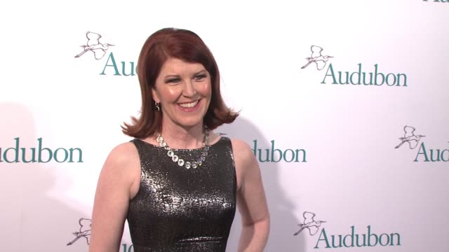 clean the national audubon society annual gala at the plaza hotel on march 31 2015 in new york city - event capsule stock videos & royalty-free footage