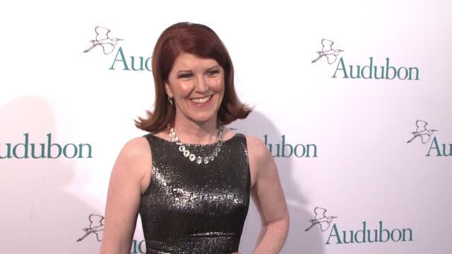 chyron the national audubon society annual gala at the plaza hotel on march 31 2015 in new york city - event capsule stock videos & royalty-free footage