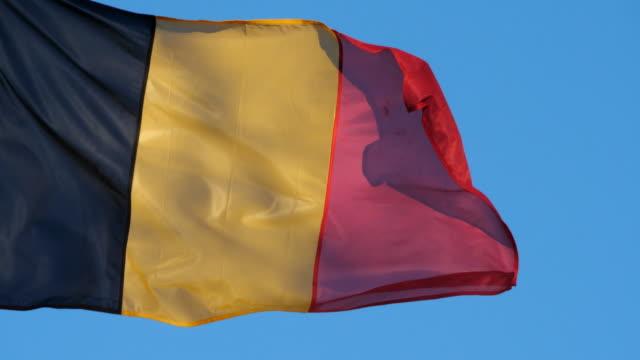 vidéos et rushes de the national belgium flag waving in the wind. - belgique