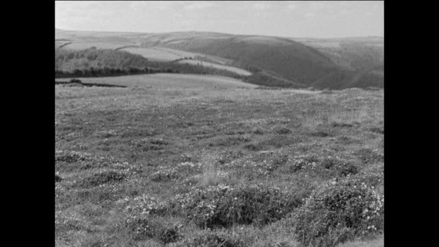 distant the natural environment is unchanged at exmoor u.k. national park / uk - exmoor national park stock videos & royalty-free footage