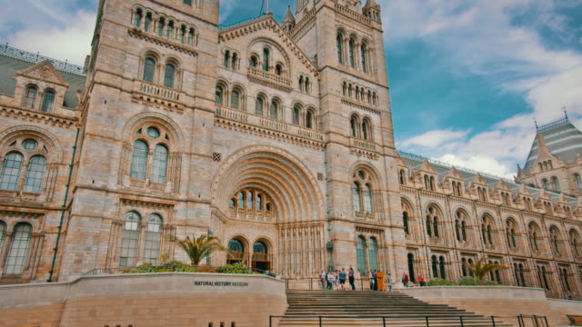the natural history museum. london. travel destination - cattolicesimo video stock e b–roll