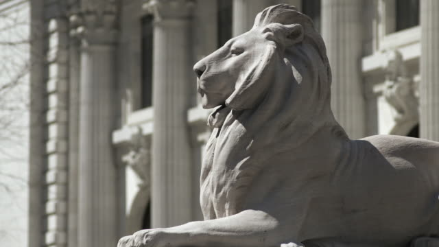 cu of the new york public library lion.  - 公共図書館点の映像素材/bロール