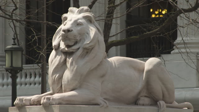 CU of The New York Public Library Lion.