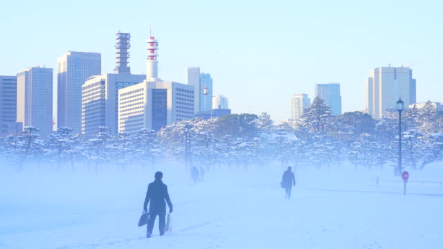 the next morning of winter snowstorm at chiyoda-ku tokyo japan – january. 23 2018. kasumigaseki district high-rise buildings stand over the snowy imperial palace forest from kokyogaien national park during the mist in the morning. - pinaceae stock videos & royalty-free footage
