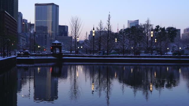 The next morning of winter snowstorm at Chiyoda-ku Tokyo Japan – January. 23 2018. Snowy street trees and streetlights reflect to the Imperial Palace Moat at dawn.