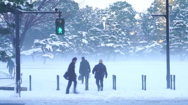 The next morning of winter snowstorm at Chiyoda-ku Tokyo Japan – January. 23 2018. Commuters cross the uchibori-dori to go to snowy Kokyogaien National Park during the mist in the morning.