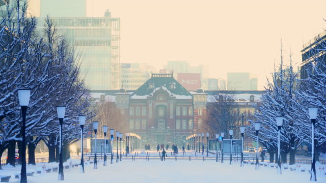 the next morning of winter snowstorm at marunouchi chiyoda-ku tokyo japan – january. 23 2018. the morning sun illuminates the snowy cityscape, which are sky, lines of ginkgo trees, street and skyscrapers around the tokyo station. - 冬点の映像素材/bロール