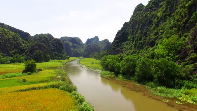 The nice cruises are on the flow of Ngo Dong river located in Tam Coc Bich Dong in Ninh Binh with drone view