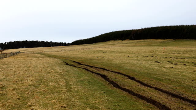 the north doddinton site is prepared for tree planting on march 21 2018 in doddington england the doddington north afforestation project has begun... - alder tree stock videos & royalty-free footage