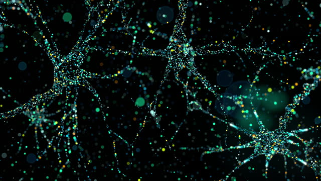 the nucleus of a neuron with multiple axons - nerve cell stock videos & royalty-free footage