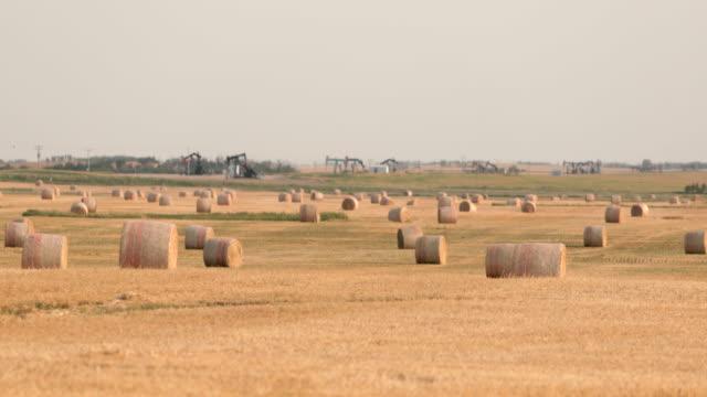 干し草の山と収穫されたフィールドの真ん中にオイルポンプ - ポンプ場点の映像素材/bロール