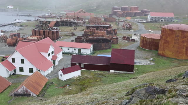 the old whaling station at grytviken on south georgia. in its 58 years of operation, it handled 53,761 slaughtered whales, producing 455,000 tons of whale oil and 192,000 tons of whale meat. - valfångst bildbanksvideor och videomaterial från bakom kulisserna