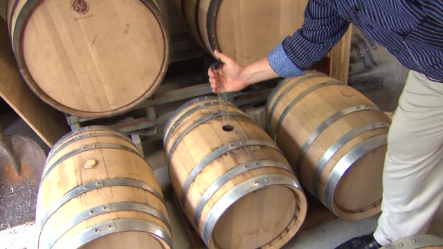 the owner of copper fiddle distillery inspects craft liquor pulled from a barrel on june 30, 2014 in lake zurich, illinois. - absinth stock-videos und b-roll-filmmaterial
