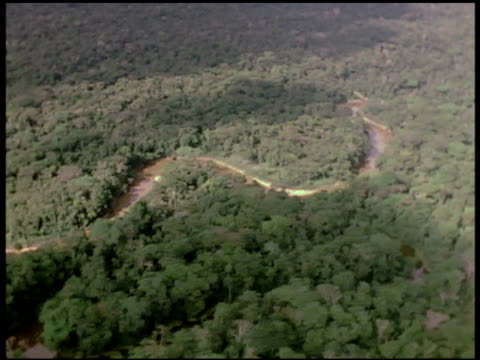 the oxbows of a jungle river flow through impenetrable forests in the amazon basin - river amazon stock videos & royalty-free footage