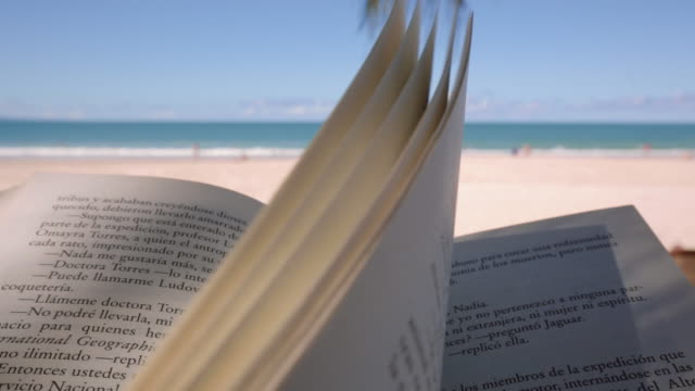 The pages of a book flying with the wind, at Noosa Beach, Queensland, Australia
