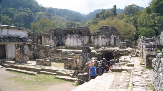 vídeos de stock e filmes b-roll de the palace at palenque mayan ruins. chiapas, mexico - palenque