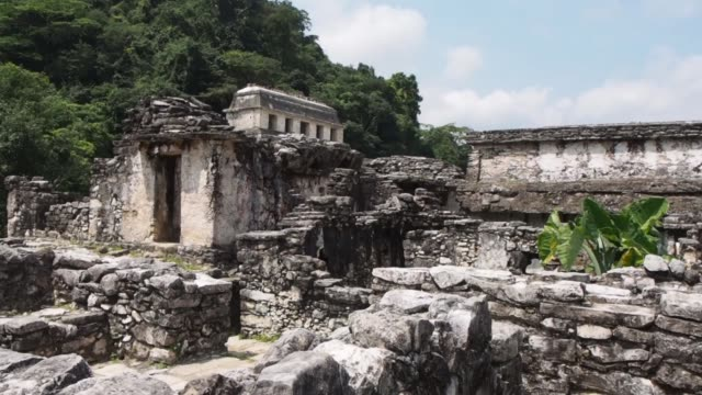 the palace palenque mexico - palenque stock-videos und b-roll-filmmaterial