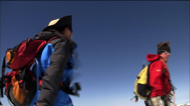 the party arrives at the summit of breithorn - gemeinsam gehen stock-videos und b-roll-filmmaterial