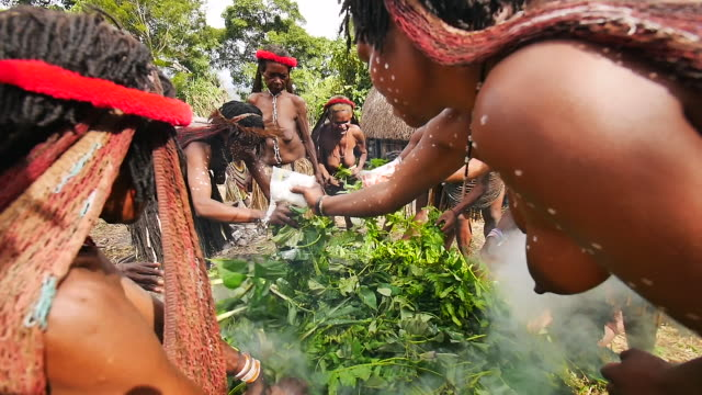 the people of the dani tribe tend to the hot stones used to cook meat and vegetables for a traditional feast shared by the entire village - grashütte stock-videos und b-roll-filmmaterial