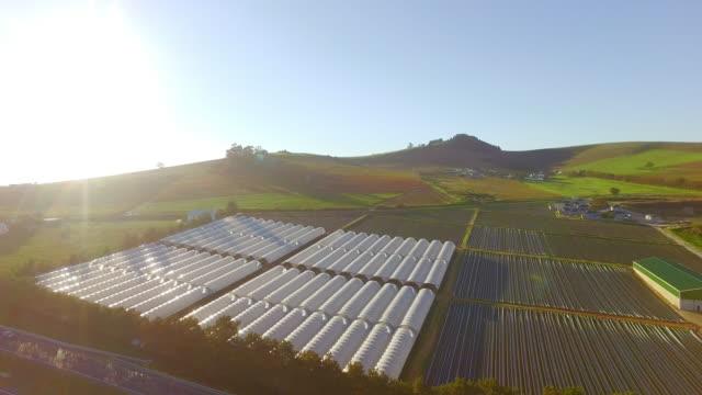 温室のための最適なスポット - グリーンハウス点の映像素材/bロール