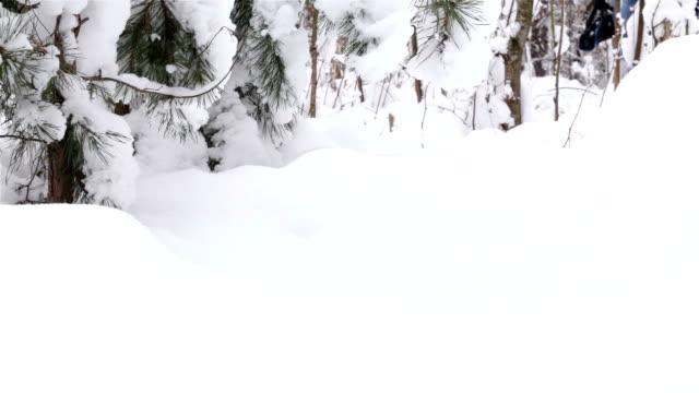 Der Fotograf ist auf der Suche nach einer wunderschönen Landschaft in den Winterwald.